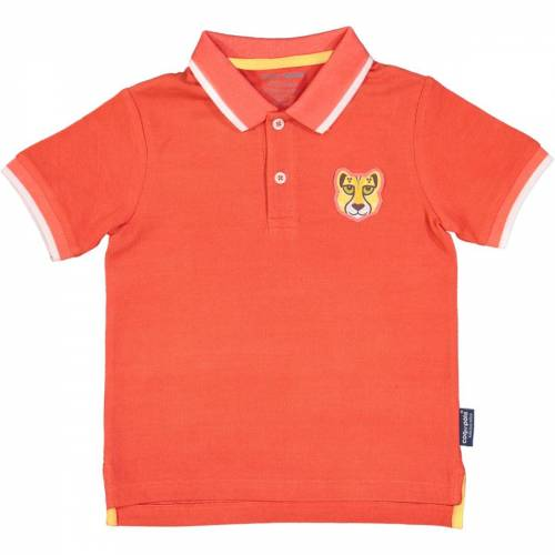 Cheetah polo