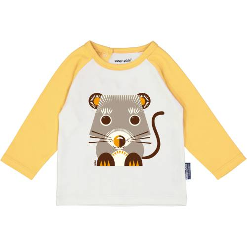 Vole long sleeves raglan t-shirt